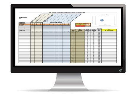 Key Account Portfolio Tool von Hartmut Sieck