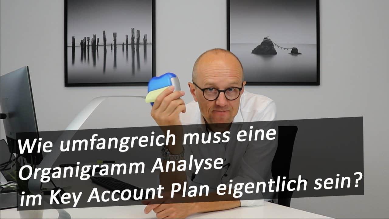 Organigramm Analyse im Key Account Plan
