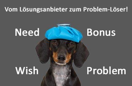 Wish – Need – Pain – Bonus: Vom Lösungsanbieter zum Problem-Löser!